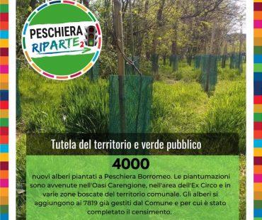 Tutela del territorio e verde pubblico